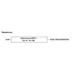 AR09019PU-N