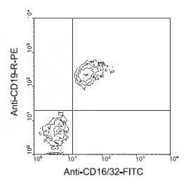 AM08040FC-N