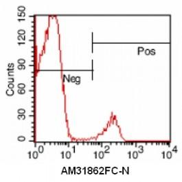 AM31862FC-N