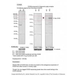 ARP50535_P050
