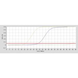 CPK3348-1nmol