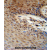 ZNF324B antibody (C-term) (AP54691PU-N) immunohistochemistry analysis in formalin fixed and paraffin embedded human skin carcinoma followed by peroxidase conjugation of the secondary antibody and DAB staining. This data demonstrates the use of the ZNF324B antibody (C-term) for immunohistochemistry. Clinical relevance has not been evaluated.