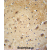 WDSOF1 antibody (C-term) (AP54559PU-N) immunohistochemistry analysis in formalin fixed and paraffin embedded human brain tissue followed by peroxidase conjugation of the secondary antibody and DAB staining. This data demonstrates the use of the WDSOF1 antibody (C-term) for immunohistochemistry. Clinical relevance has not been evaluated.