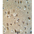UPK1B Antibody (Center) (AP54476PU-N) IHC analysis in formalin fixed and paraffin embedded brain tissue followed by peroxidase conjugation of the secondary antibody and DAB staining. This data demonstrates the use of the UPK1B Antibody (Center) for immunohistochemistry. Clinical relevance has not been evaluated.