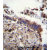 TTBK2 Antibody (N-term) (AP54392PU-N)immunohistochemistry analysis in formalin fixed and paraffin embedded human lung tissue followed by peroxidase conjugation of the secondary antibody and DAB staining. This data demonstrates the use of TTBK2 Antibody (N-term) for immunohistochemistry. Clinical relevance has not been evaluated.
