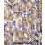 TOR1B Antibody (C-term) (AP54336PU-N)immunohistochemistry analysis in formalin fixed and paraffin embedded human stomach tissue followed by peroxidase conjugation of the secondary antibody and DAB staining. This data demonstrates the use of TOR1B Antibody (C-term) for immunohistochemistry. Clinical relevance has not been evaluated.
