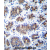 TMM18 Antibody (Center) (AP54291PU-N)immunohistochemistry analysis in formalin fixed and paraffin embedded human stomach tissue followed by peroxidase conjugation of the secondary antibody and DAB staining. This data demonstrates the use of TMM18 Antibody (Center) for immunohistochemistry. Clinical relevance has not been evaluated.