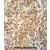TEX9 antibody (N-term) (AP54223PU-N) immunohistochemistry analysis in formalin fixed and paraffin embedded human testis carcinoma followed by peroxidase conjugation of the secondary antibody and DAB staining. This data demonstrates the use of the TEX9 antibody (N-term) for immunohistochemistry. Clinical relevance has not been evaluated.