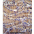 TEKT5 Antibody (Center) (Cat. AP54217PU-N)immunohistochemistry analysis in formalin fixed and paraffin embedded human stomach tissue followed by peroxidase conjugation of the secondary antibody and DAB staining. This data demonstrates the use of TEKT5 Antibody (Center) for immunohistochemistry. Clinical relevance has not been evaluated.