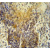 Immunohistochemistry analysis in human lung carcinoma (Formalin-fixed, Paraffin-embedded), using MRPS24 antibody Cat.-No. AP52753PU-N, followed by peroxidase conjugation of the secondary antibody and DAB staining. This data demonstrates the use of this antibody for IHC. Clinical relevance has not been evaluated.