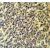 Immunohistochemistry analysis in testis carcinoma (Formalin-fixed, Paraffin-embedded) using PLA2G6 antibody Cat.-No. AP53326PU-N, followed by peroxidase conjugated secondary antibody and DAB staining. This data demonstrates the use of the PLA2G6 antibody for IHC. Clinical relevance has not been evaluated.