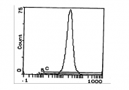CL053R - MHC Class I H-2 Dd