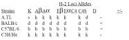 CL067 - MHC Class II I-Abd