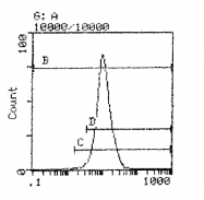 CL053F - MHC Class I H-2 Dd