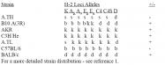 CL074 - MHC Class II I-Ek