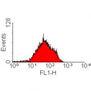 SM1778B - CD218a / IL18R1