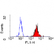 SM1793PS - CD43 / Leukosialin