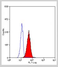 BM2226LE - CD221 / IGF1R