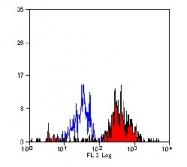 SM1826R - CD282 / TLR2