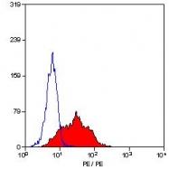 SM1177R - CD105 / Endoglin