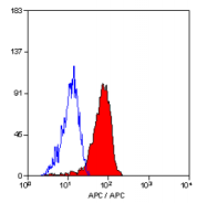 SM1525APC - CD10 / Neprilysin