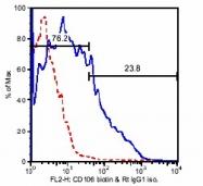 SM051B - CD106 / VCAM1