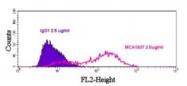 SM1777P - CD112 / Nectin 2