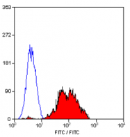 SM1578P - CD29 / Integrin beta-1
