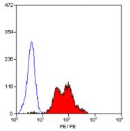 SM1578R - CD29 / Integrin beta-1