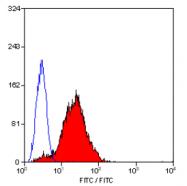 SM1104B - CD42a / GPIX