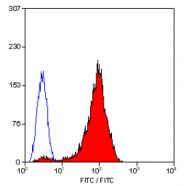 SM1105B - CD42b / GPIbA