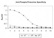 R1178 - Phosphothreonine