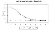 R1176 - Phosphotyrosine