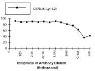 CL010 - CD8