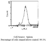 CL023A - CD44