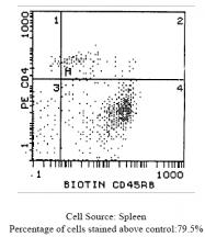 CL029B - CD45 / LCA