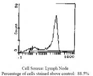 CL032R - CD62L / L-Selectin