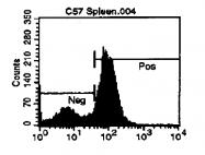 CL034B - CD72