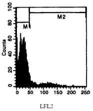 CL050RX - Neutrophils