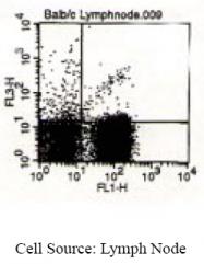 SM093C - T Cell Receptor (TCR) gamma/delta