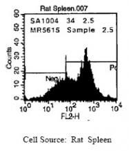 SM286B - CD54 / ICAM1