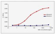 AM00951PU-N - Influenza B