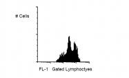 AM05207RP-N - CD11a / ITGAL