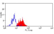 AM05619RP-N - CD276 / B7H3