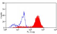 AM05665RP-N - CD14