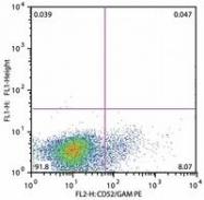 SM3081R - CD52 / CAMPATH-1