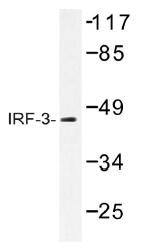 AP01444PU-N - IRF3
