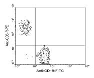 AM08024RP-N - CD5