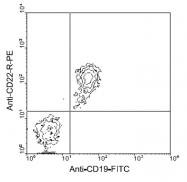 AM08033RP-N - CD22
