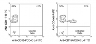 AM08043FC-N - CD154 / CD40L